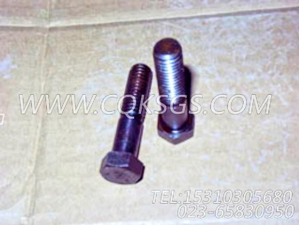 106069六角螺栓,用于康明斯KTA38-G5-880KW柴油机机油旁通滤清器组,【柴油发电】配件-2