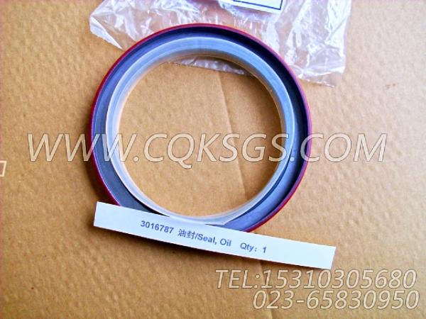 3016787油封,用于康明斯KTA38-G2-660KW主机风扇布置组,【发电用】配件-1
