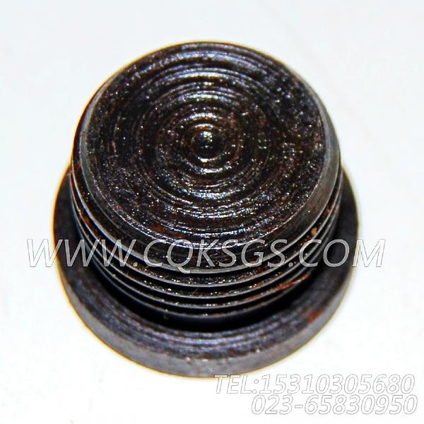 3046202螺塞,用于康明斯KTA38-C1050柴油发动机起动马达组,【上海汇众牵引车】配件
