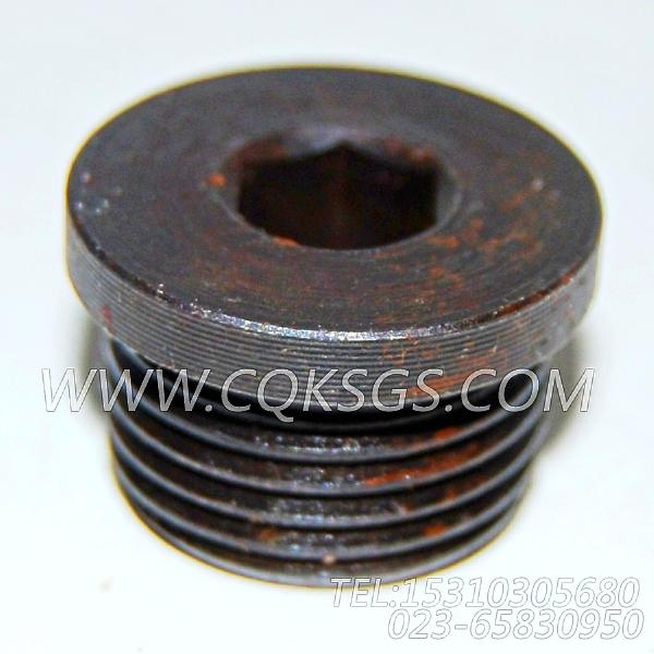 3046202螺塞,用于康明斯M11-C175柴油发动机机油冷却器组,【固井水泥车】配件-2