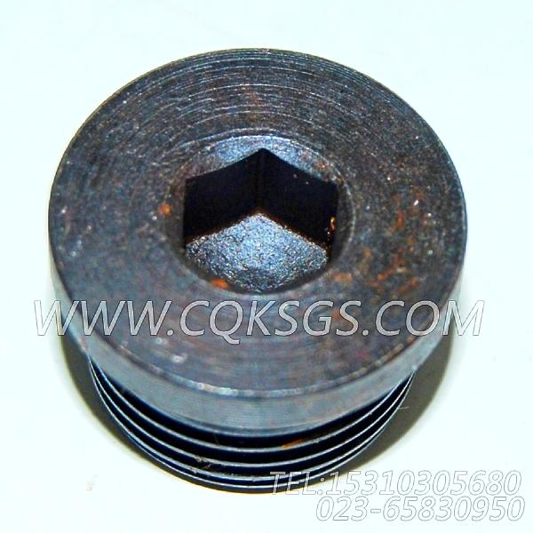 3046202螺塞,用于康明斯KTA38-C1050柴油发动机起动马达组,【上海汇众牵引车】配件-2