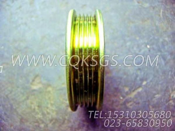 3046204发电机皮带轮,用于康明斯M11-C290发动机发电机安装组,【拌和机】配件-2