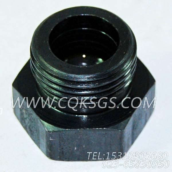 3046869放油塞,用于康明斯NTA855-M350主机机油盘组,【船舶机械】配件-2