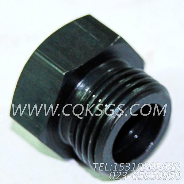 3046869放油塞,用于康明斯NTA855-M350主机机油盘组,【船舶机械】配件-0