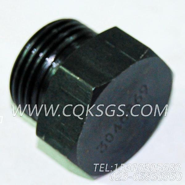 3046869放油塞,用于康明斯NTA855-M350主机机油盘组,【船舶机械】配件-1