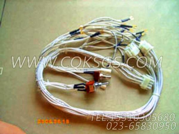 3053044导线,用于康明斯NTA855-G2(M)60Hz动力仪表板组,【船舶用】配件