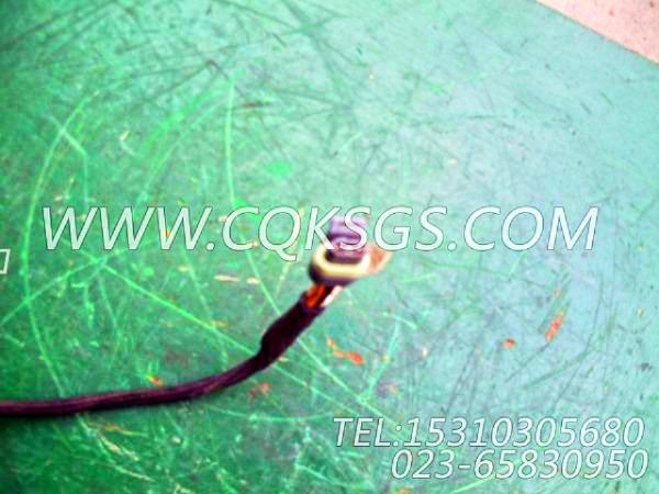 3056356报警器导线,用于康明斯M11-C310柴油机报警开关组,【通化60T】配件-2
