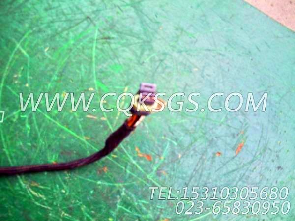 3056356报警器导线,用于康明斯M11-C310柴油机报警开关组,【通化60T】配件-1