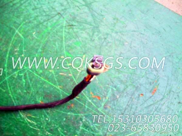 3056356报警器导线,用于康明斯M11-C290柴油机散件组,【威马冷再生机】配件-2