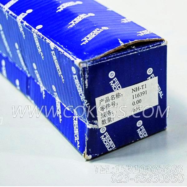 116391衬套,用于康明斯NTA855-G2-CE170柴油发动机附件驱动安装组,【江汉四机压裂车】配件-1
