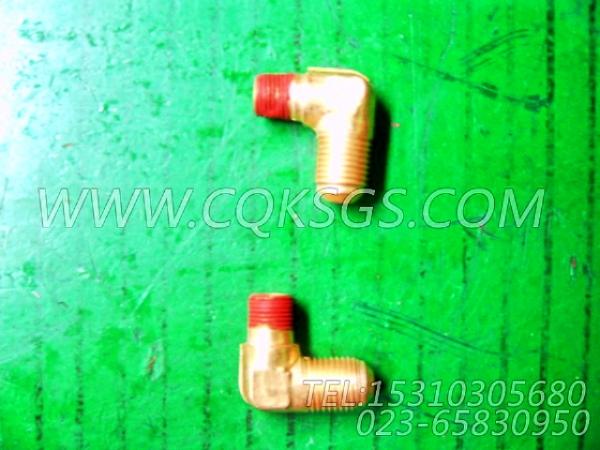 116936阳性弯管接头,用于康明斯NT855-P300柴油发动机燃油进回油管路组,【应急水泵机组】配件-2