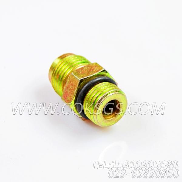 118346接头,用于康明斯KTA19-P540动力液压调整正时组,【应急水泵机组】配件-0