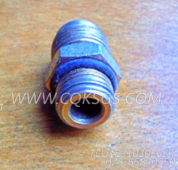 118346接头,用于康明斯KTA19-P540动力液压调整正时组,【应急水泵机组】配件-2