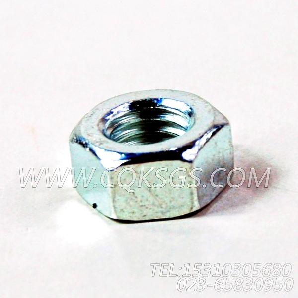 3165937六角螺母,用于康明斯M11-C290柴油发动机散件组,【天津科普抛雪机】配件