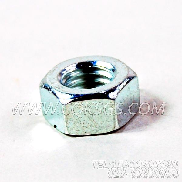 3165937六角螺母,用于康明斯NTA855-C310柴油发动机散热器组,【打桩机】配件-1