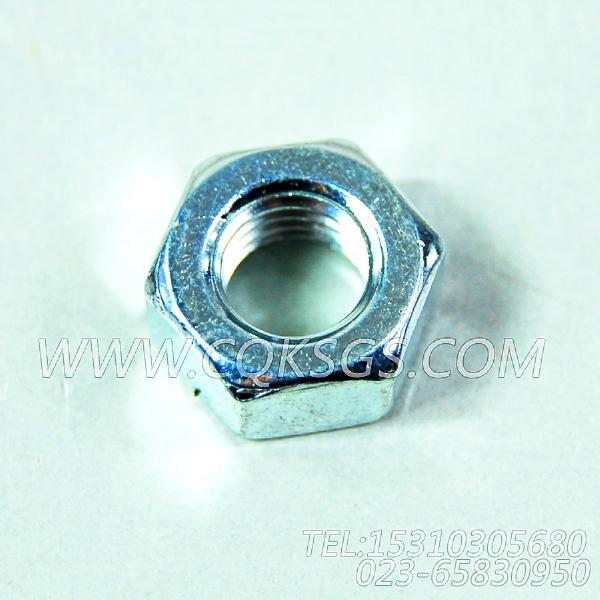 3165937六角螺母,用于康明斯NTA855-C310柴油发动机散热器组,【打桩机】配件-0