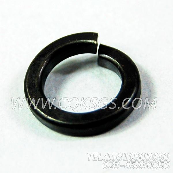 3165976弹簧垫圈,用于康明斯NT855-L290柴油发动机风扇布置组,【车用】配件