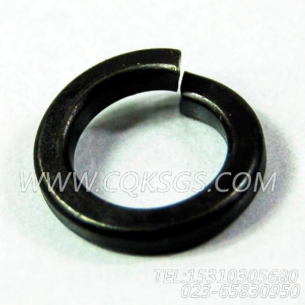 3165976弹簧垫圈,用于康明斯NT855-L290柴油发动机风扇布置组,【车用】配件-2