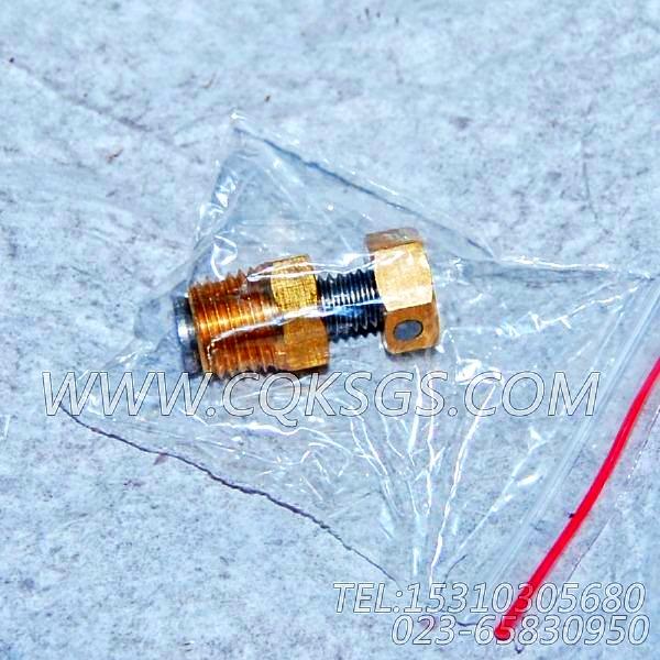 3165999放水开关,用于康明斯NTA855-M350柴油发动机热交换器组,【船舶】配件-0