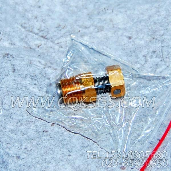 3165999放水开关,用于康明斯NTA855-M350柴油发动机热交换器组,【船舶】配件-2