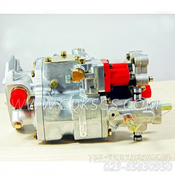 3262175基础燃油泵,用于康明斯NT855-C280主机燃油泵总成组,【稳定土拌和机】配件-1