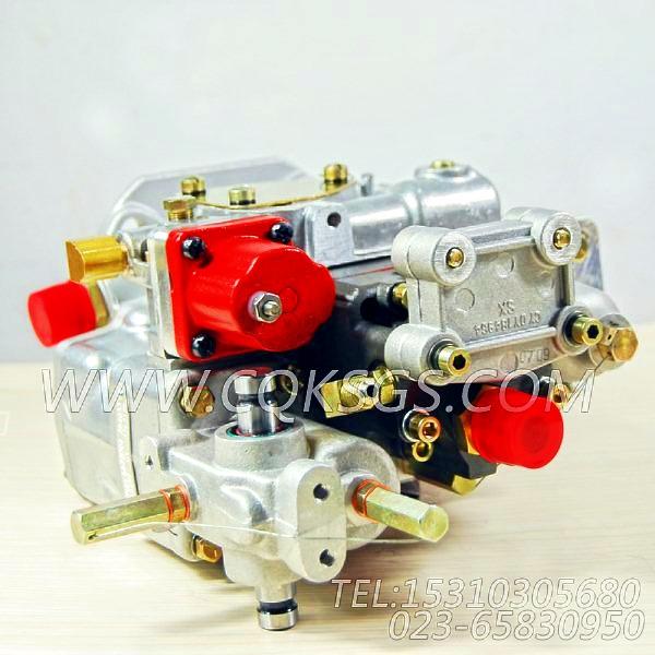 【燃油泵】康明斯CUMMINS柴油机的3019487 燃油泵-0
