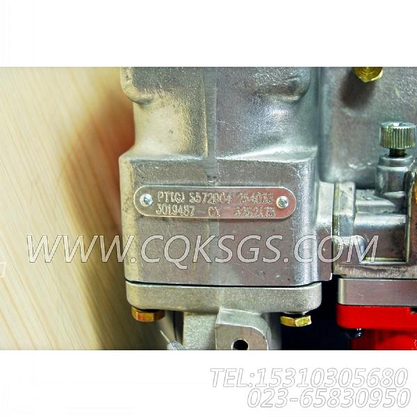 3262175基础燃油泵,用于康明斯NT855-C250柴油机燃油泵组,【德工冷再生机】配件-1