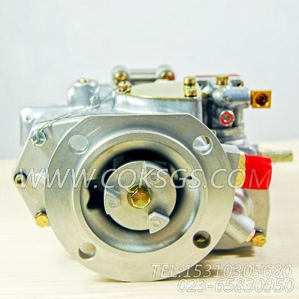 3262175基础燃油泵,用于康明斯NT855-P250柴油机燃油泵总成组,【泥浆泵】配件-2