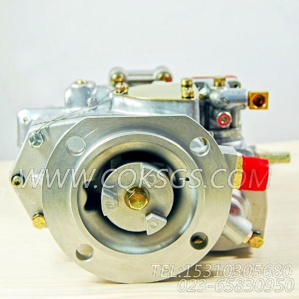 3262175基础燃油泵,用于康明斯NT855-C250柴油机燃油泵组,【德工冷再生机】配件-2