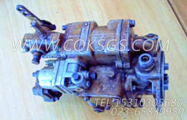 3262175基础燃油泵,用于康明斯NT855-P250柴油机燃油泵总成组,【泥浆泵】配件-0