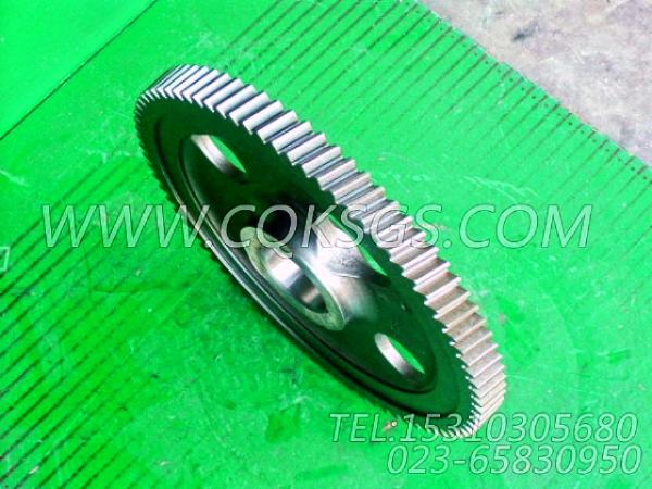 3417775凸轮轴齿轮,用于康明斯M11-C300柴油机性能件组,【扫雪车】配件