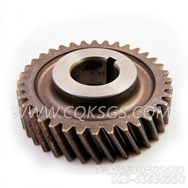 142689齿轮,用于康明斯NTA855-C335发动机附件驱动安装组,【宣化推土机】配件-0