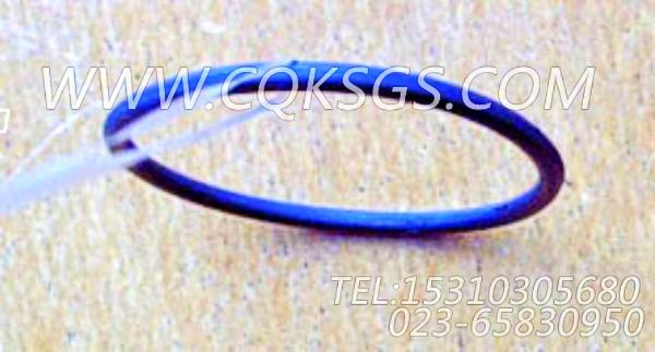 145540O型密封圈,用于康明斯KTA19-C525柴油发动机机油冷却器组,【冷再生机】配件