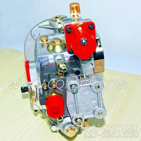 3655993燃油泵总成(T.L.N),用于康明斯KTA19-G4(M)主机燃油泵总成组,【船用】配件-0