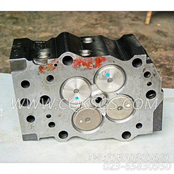 3811985气缸盖,用于康明斯KTA19-M600动力性能件组,【抽沙船用】配件-0
