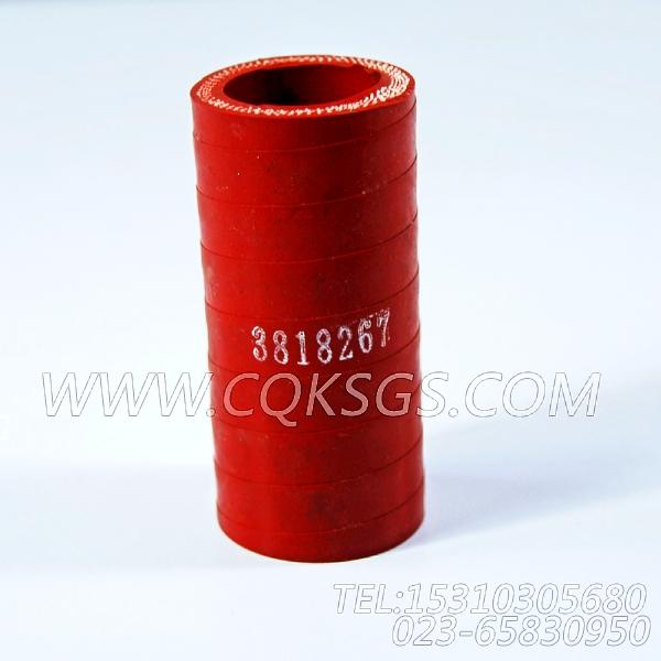 3818267软管,用于康明斯NYA855-G4发动机进气管组,【电力】配件-1