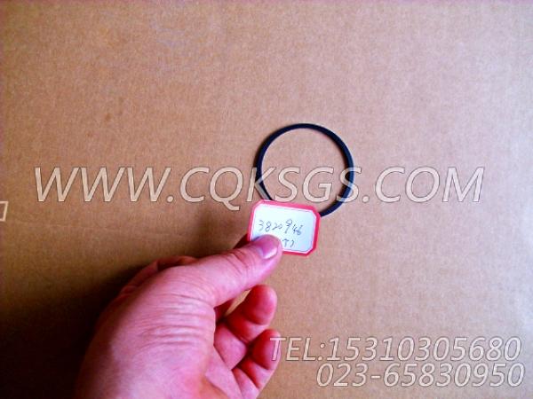 3820946矩形密封圈,用于康明斯ISM320V主机气缸体组,【船用主机】配件-0