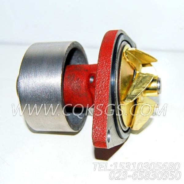 【柴油机6BT5.9-C130的水泵组】 康明斯水泵总成,参数及图片-1