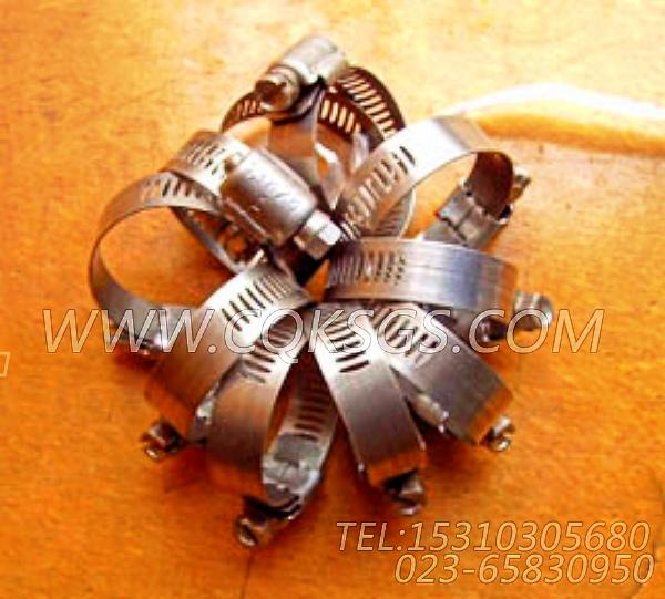 43828A软管卡箍,用于康明斯NTA855-G1发动机出水管安装组,【电力】配件-0