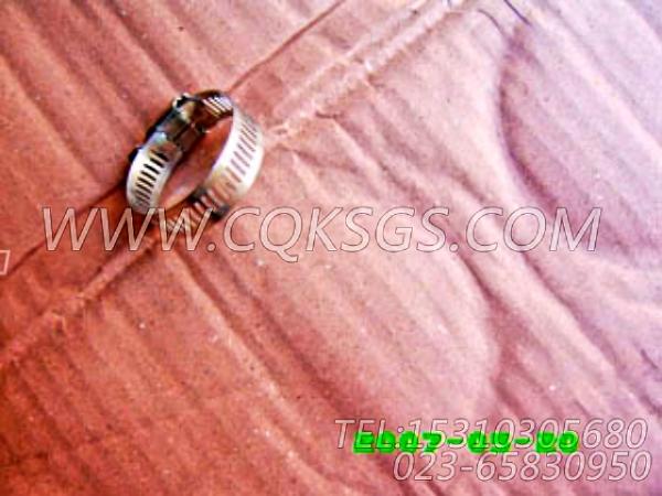 43828A软管卡箍,用于康明斯NT855-P300主机散热器组,【应急水泵机组】配件-2