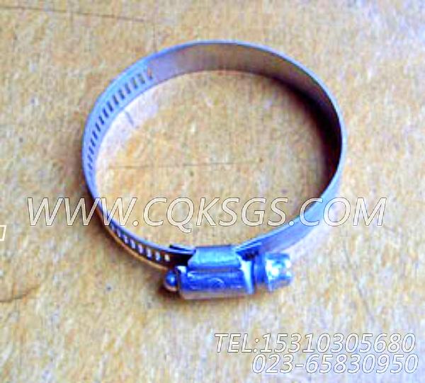 43828C软管卡箍,用于康明斯KTA19-M470发动机水管组,【船机】配件