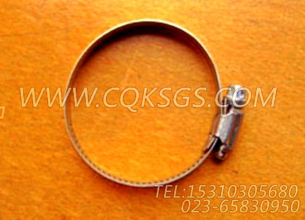 43828C软管卡箍,用于康明斯KTA19-M470发动机水管组,【船机】配件-2