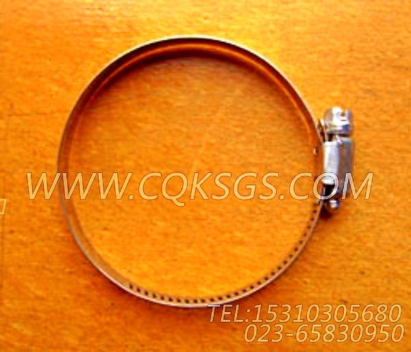 43828D管夹,用于康明斯NTA855-M350主机防护盖组,【船舶机械】配件-0