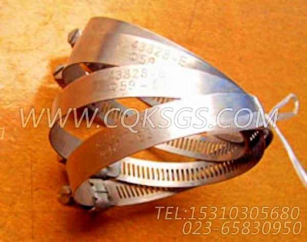 43828E软管夹箍,用于康明斯NT855-P300柴油发动机散热器组,【泥浆泵】配件-0