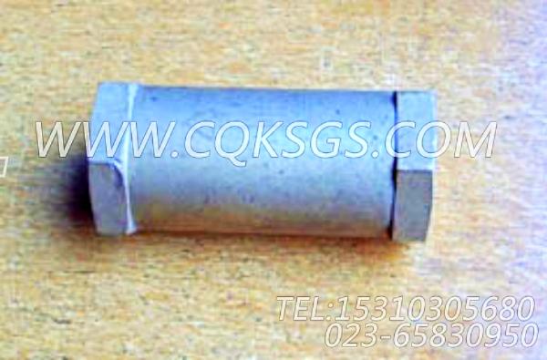 178079单向阀,用于康明斯KTA19-M600主机燃油管路组,【船用】配件-0