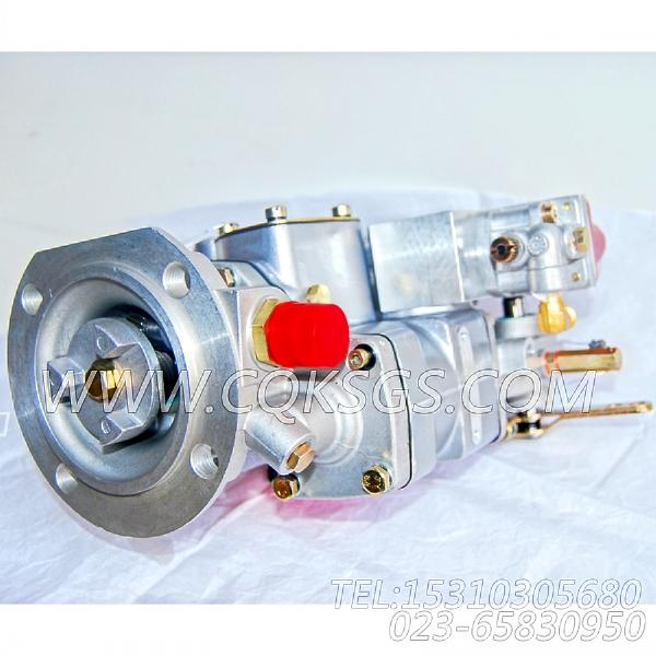 【燃油泵】康明斯CUMMINS柴油机的3019487 燃油泵-1