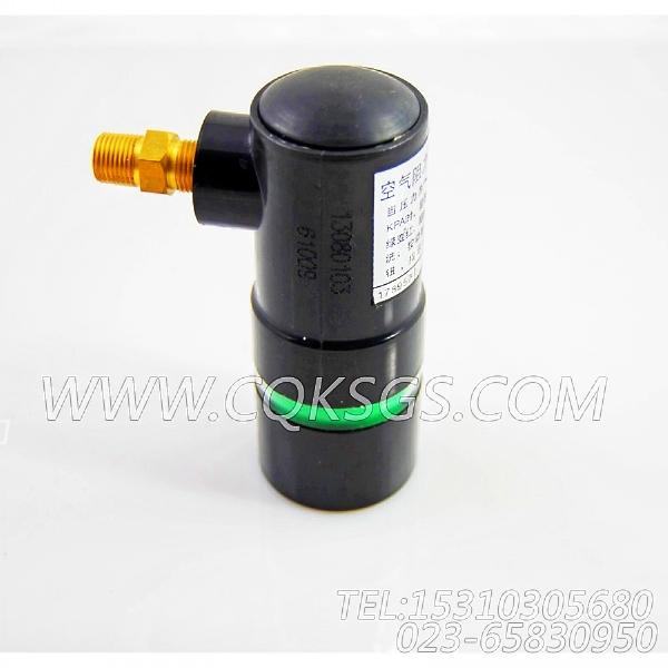 178957空气阻力指示器,用于康明斯M11-C350发动机阻力指示器组,【柱塞泵】配件-1