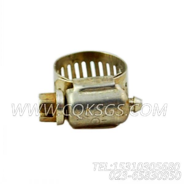 179904软管夹,用于康明斯NTA855-C360主机水滤器组,【重庆重汽牵引车】配件