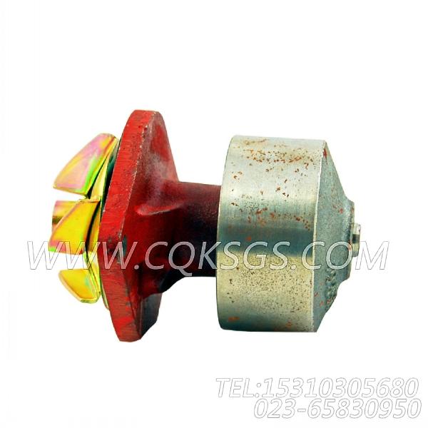 【柴油机6BT5.9-C130的水泵组】 康明斯水泵总成,参数及图片-2