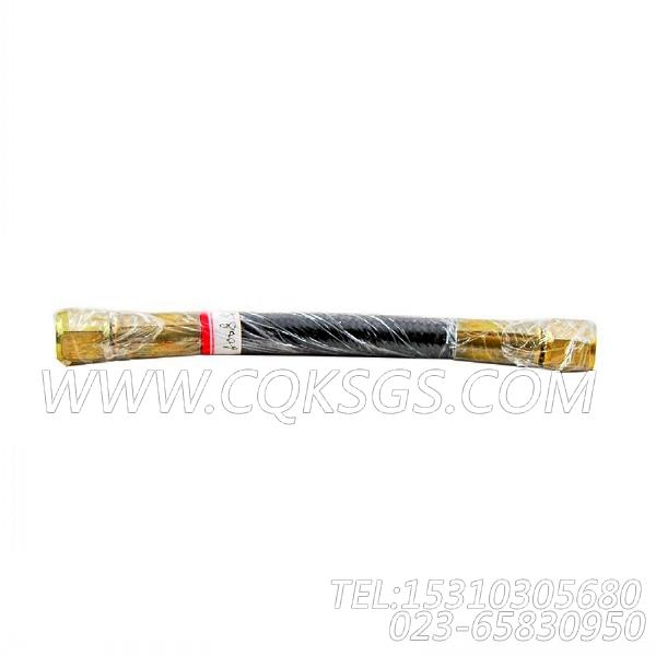 AS6008SS柔性软管,用于康明斯KTA19-G3发动机基础件组,【发电用】配件-0